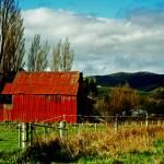 """Rural"" by BKaneko"