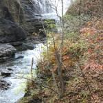"""""""Minekill State Park Falls"""" by scenesbyjd"""