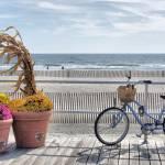 """""""Boardwalk"""" by tom-macpherson"""