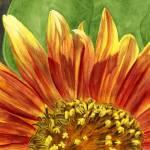 """Big Happy Flower"" by GayleMadeira"
