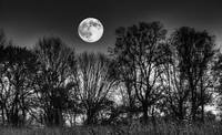 October Dusk and Hunters Moon by Jim Crotty