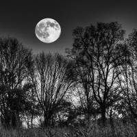 October Dusk and Hunters Moon by Jim Crotty by Jim Crotty