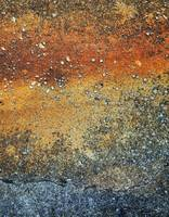 abstract landscape created on rusty pavement