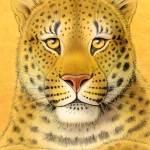 """Amur Leopard"" by smbittler"