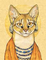 Abyssinian Cat Portrait - Papyrus Cat