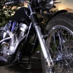 """""""Harley Davidson Sportster"""" by tillsonburg"""