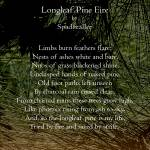 """Longleaf Pine Fire Poster"" by spadecaller"