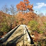 """Bridge and Autumn Landscape"" by ssleggett"