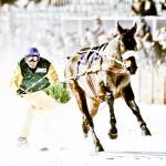 """The White Turf Races at St. Moritz"" by johnmiddlebrook"
