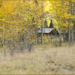 """Ashcroft ~ Colorado Ghost Town"" by PattysPics"