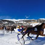 """Horses Race at White Turf"" by johnmiddlebrook"