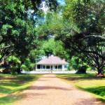 """Cherokee Plantation 02"" by Cynthia_Burkhardt"