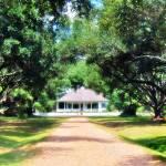 """Cherokee Plantation 02"" by Cynthia_Burkhardt"