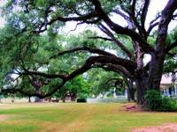 Oakland Creole Plantation grounds 06