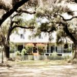 """Oakland Creole Plantation selective color 01"" by Cynthia_Burkhardt"