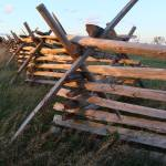 """Split Rail"" by LivingGaia"