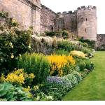 """Garden at Stirling Castle"" by sharonblanchard"