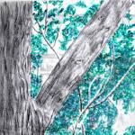 """Patio Tree"" by andrewakufo"
