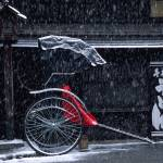 """Snow falling on rickshaw"" by fbphoto"