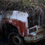 """Truck With Kudzu"" by LauraMoyer"