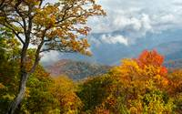 Painted Parkway - Blue Ridge Mountains Fall Foliag