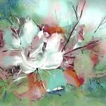 """Magnolia"" by JanandMichaelDavid"