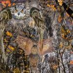"""""""The Enchanted Forest Owls on the move"""" by LessardArt"""