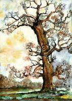 My Friend The Tree Watercolor by Ginette Callaway