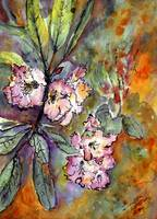 Rhododendron Watercolor & Ink by Ginette Callaway
