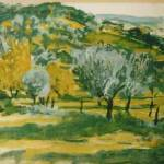 """Olive Trees 1991"" by dbugproductions"