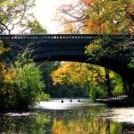 """""""Bridge of Kindness"""" by ZunildaSarete"""