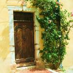 """""""Roses round the door"""" by CarrieWaters"""