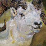 """Dall Sheep Ram Oil Painting by Ginette"" by GinetteCallaway"