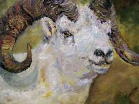 Dall Sheep Ram Oil Painting by Ginette