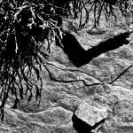 """""""Pennine Rock"""" by rdalby"""