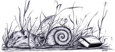 snail with matchbox
