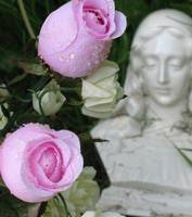 weeping roses and mary