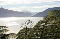 Marlborough Sounds - New Zealand