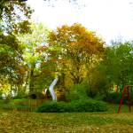 """autumn, nature, trees, landscape, romance, beauty,"" by Marija4"
