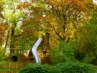 autumn, nature, trees, landscape, romance, beauty,