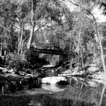 """Reflective Boulder Creek"" by davidflurkey"