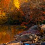 """Fall Reflections"" by jeannesheridan"