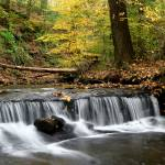 """Fall Stream"" by hockmanphotography"