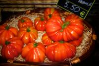 Tomatoes From Lourdes