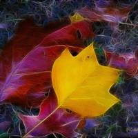 """November Ghosts"" by RC DeWinter"