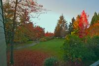 Vancouver Park in Autumn 21