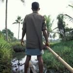 """Kerala 2"" by nicholaspitt"