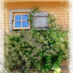 """""""Window in Plymouth"""" by jbjoani2"""