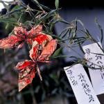"""Spring Festival near Chichibu"" by VAphotoart"