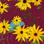 """Black Eyed Susans on Burgundy"" by Wendy_Ferguson"